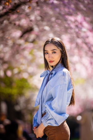 Beautiful young asian woman in blooming cherry blossoms garden in Prague Foto de archivo - 121435849