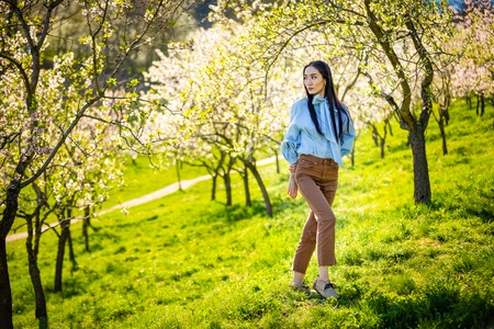 Beautiful young asian woman in blooming apple blossoms garden in Prague Foto de archivo - 121435853