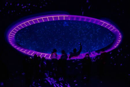 Prague, Czech Republic - 23.11.2019: Big aquarium with jellyfish or meduses in the neon light in new opened Prague medusarium in Czech Republic 新聞圖片