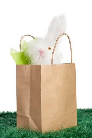 Cute white Easter bunny inside a brown paper bag on green grass Stock Photo - 18097422