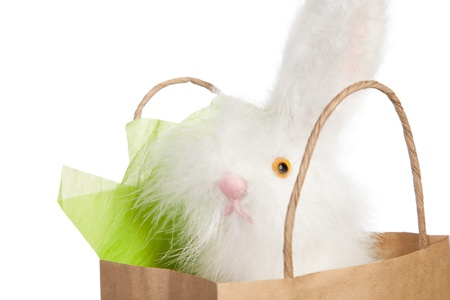Fluffy white toy Easter bunny poking its nose out of a brown paper carrier gift bag isolated on white Stock Photo - 18097419
