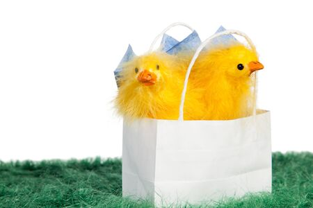 White paper bag with two cute Easter chicks on green grass Stock Photo - 18175923