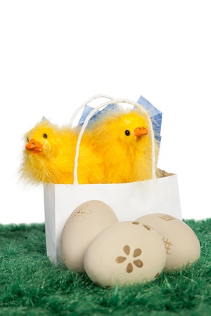 Easter present in a white paper bag with two baby chicks and decorated Easter eggs on green grass Stock Photo - 18175976