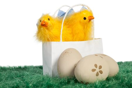 White bag with two baby chickens and painted Easter eggs on green grass Stock Photo - 18175979