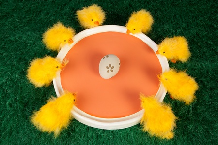 encircling: Vibrant fun Easter greeting card with a group of colourful yellow fluffy Easter chicks surrounding an orange dish looking in curiosity at one decorated Easter egg in the centre