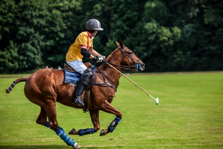 A Polo Player hits the Polo ball with a stick
