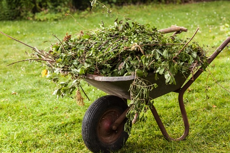 A filled wheelbarrow stands on a grassland at a sunny day