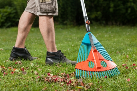 A Gardener is building a foliage pile  Stock Photo