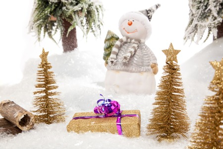 winter scene: The Snowman presents a Christmas Gift in a nice winter Scene
