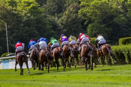 racehorses: Back view from a couple of racehorses at a outdoor racetrack. Stock Photo