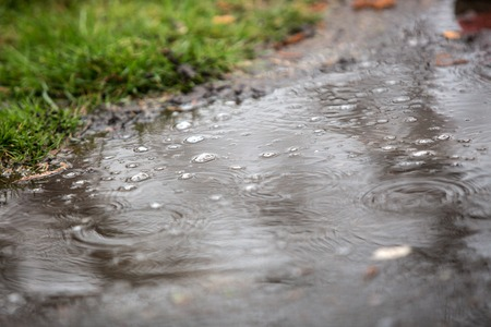 brolly: Some water drops in a puddle during a heavy rainfall.
