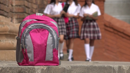skirts: Pink School Backpack And Girls Wearing Skirts