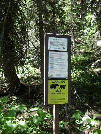 Wilderness Warning Sign