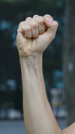 Hand Fist And Forearm