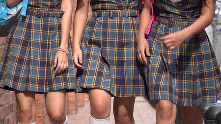 School Uniforms And Dress Codes Banco de Imagens