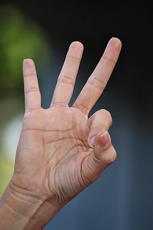 Female Hand Number Three