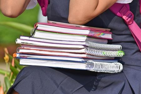 Female Teen Student With Notebooks Zdjęcie Seryjne