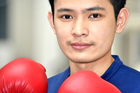 Serious Male Boxer Stockfoto