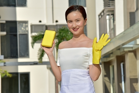 Youthful Female Smiling With Sponge Cleaning