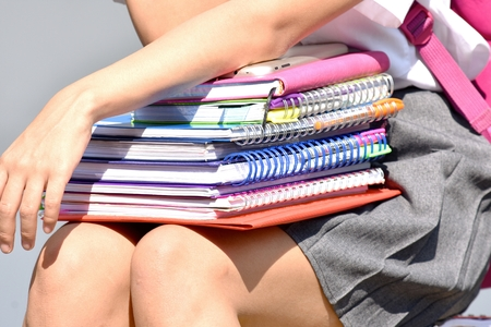 Female Student With Stack Of Notebooks 写真素材