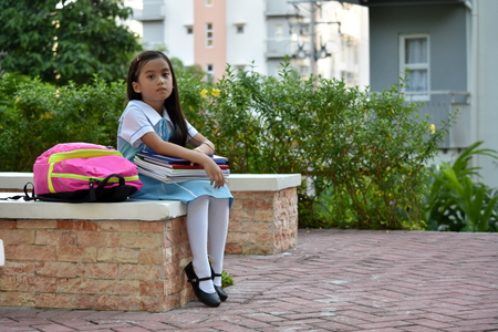 Unemotional Girl Student Wearing Uniform With Notebooks Stock Photo