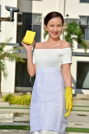 Smiling Pretty Minority Female Wearing Apron Cleaning
