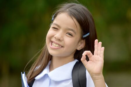 Diverse Girl Student And Okay Sign Wearing School Uniform