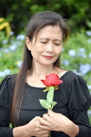 Unhappy Adult Female With A Rose