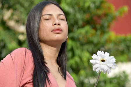 Unemotional Filipina Adult Female With A Daisy