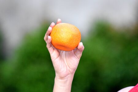A Female Hand Holding Orange