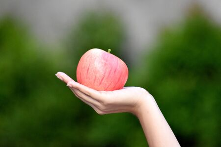 A Female Hand Holding Apple