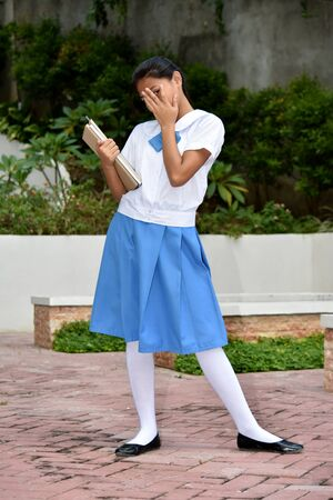 Timid Pretty Girl Student With School Books