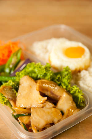 Fish Bento with rice and egg