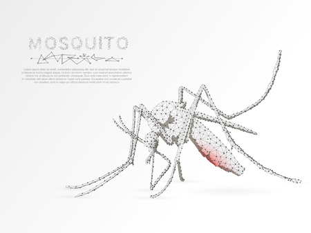 Origami Mosquito that sucks blood, Polygonal space low poly with connecting dots and lines. Malaria concept. Connection wireframe structure. Vector on white background