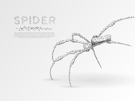 Origami style, Climbing Spider silhouette. Polygonal space low poly illustration. Poison, danger symbol. Connection wireframe mesh structure. Vector on white background 矢量图像
