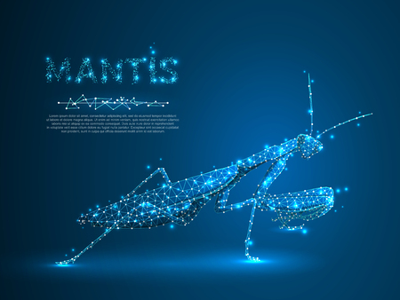 Hunting Mantis bug isolated silhouette. Polygonal space low poly illustration. Connection wireframe mesh structure. Vector on dark blue background