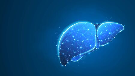 Liver, Human organ. Adult body anatomy, health biology, internal world of people. Low poly, wireframe 3d vector illustration. Abstract polygonal image on blue neon background