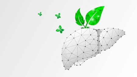 Healthy Liver, human organ with green leaves and butterfly. Adult body anatomy, health biology. Low poly, wireframe 3d vector illustration. Abstract polygonal image on white origami background Vettoriali