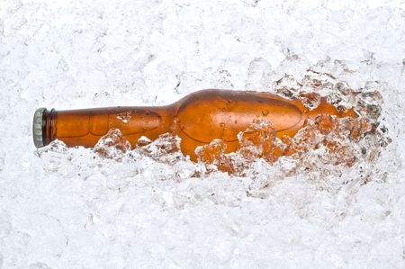 crushed ice: Cold beer resting in a pile of crushed ice
