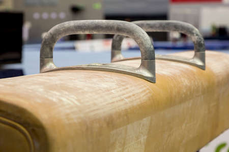 prepares trainees on pommel horse