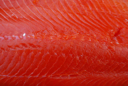 chum: Salmon Steak