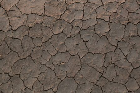 Dry cracked earth in the desert, concept of global warming climate. Non fertile soil Stockfoto