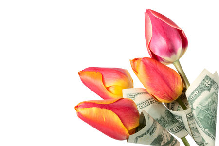 leafage: Dollars as a leafage of tulips