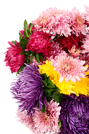 Flowers. Bouquet of chrysanthemums and asters isolated on white photo