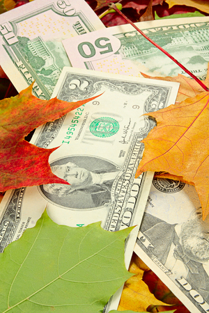 price cutting: Concept on a theme of price decline. Dollars and autumn leaves