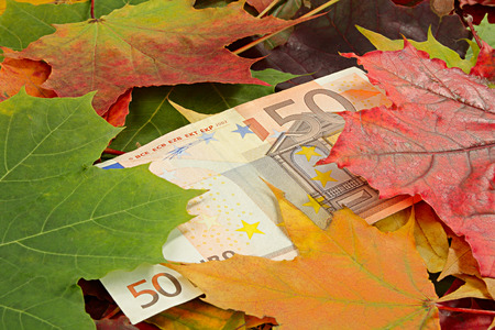 price cutting: Idea on a theme of price-cutting. Euro and autumn leaves Stock Photo
