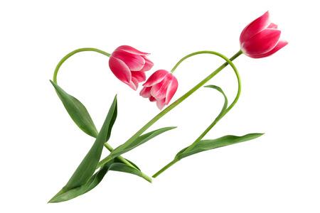 Flower idea for Valentine