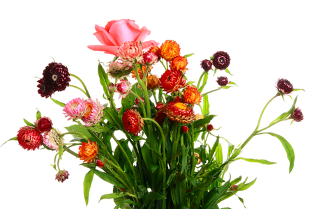 goodly: Goodly summer bouquet on white background