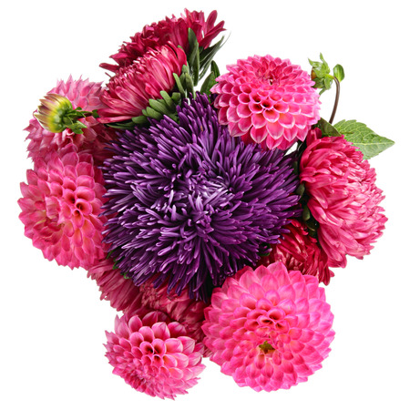 Dahlias and asters Bouquet of flowers isolated on white