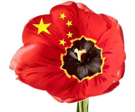 China flag on the order of flower isolated on a white background china flag on the order of flower isolated on a white background stock photo picture and royalty free image image 32715311 mightylinksfo